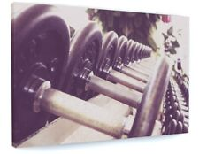 FITNESS GYM BARBELLS SHOP CANVAS PICTURE PRINT WALL ART PREMIUM FRAME #4206