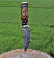 HAND FORGED DAMASCUS STEEL Hunting Knife w/ Wood & Brass Guard handle