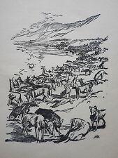 L' ile aux loups, ronde de nuit BOIS dessin de SEM gravé par L.ANDRE 1923