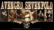 AVENGED SEVENFOLD - Bat Photo Vinyl Sticker:NEW