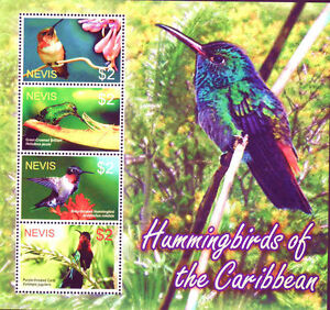 Nevis MNH SS, Humming Birds, Rufos, Green Crowned, Ruby Purple throated