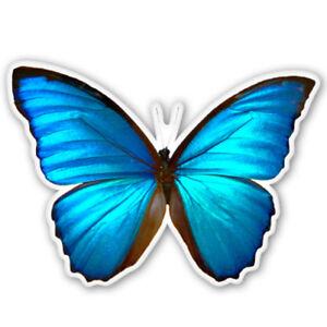 Blue Morpho Butterfly Beautiful Car Vinyl Sticker - SELECT SIZE