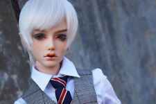 BJD 1/3 Doll Boy Dia Male Elf Head Human Body Dolls free eyes + face Up resin