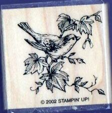 A Bird on Branch Rubber Stamp