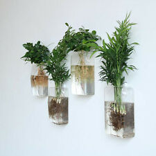 Clear Wall Hanging Glass Vase Terrarium Container for Plant Flower Decor
