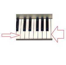 YAMAHA PSR 230/280/600 VH1809D0 1-OCTAVE WHITE KEY SET A/B/C/D/E/F/G SPARE PART