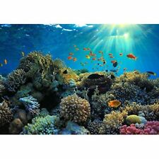 Wall26 - Beautiful View of Sea Life - Canvas Art Wall Decor - 66x96 inches