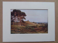 """REIGATE WINDMILL SURREY OLD  PRINT DATE 1914 NEW 6x8"""" MOUNT  READY TO FRAME"""