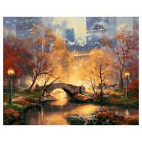 16X20inch Paint By Number Kit DIY Digital Oil Acrylic Painting on Canvas Ho R5E5
