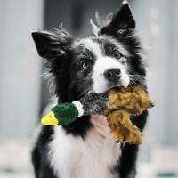 Pour Chien Jouet couinant canard UEETEK Brun jouet chien canard qui couine Chats