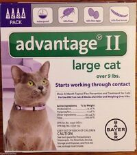 Bayer Advantage II Large Cats 4 Pack Flea Drops Lice Medicine Purple Box US EPA