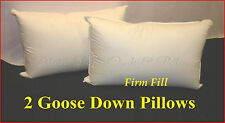 GOOSE DOWN STANDARD FIRM PILLOWS  HOTEL DELUXE QUALITY 100% COTTON COVER