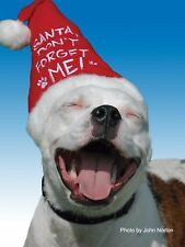 Pit Bull Christmas Cards - Santa Don't Forget Me (Pack of 10)