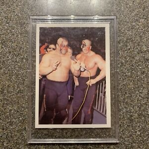 1988 Wonderama NWA ~ ROAD WARRIORS ~ #30~ MINT!