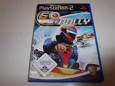 PlayStation 2   PS2  Go Kart Rally