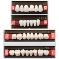 Dental B1 Shade Full Mouth Two-Layer Synthetic Resin Teeth Whitening Denture