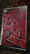 Teenage Mutant Ninja Turtles #12 NM/MT 9.8 HIGH GRADE IDW SCARCE First Printing