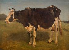 Black and white cow standing. Study. Carlo Dalgas Tiere Kühe Hörner B A3 01002