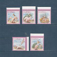 Albanie   faune  oiseaux  pelicans roses   1967  num: 962/66 **