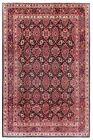 Hand Knotted Wool Navy Fine Sarouk Oriental Area Rug Carpet 7 x 10