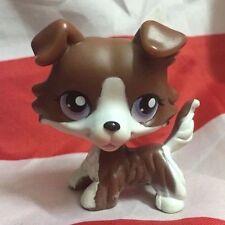 2'' Brown  Collie Dog Purple Eyes Kids Toys Puppy Littlest Pet Shop LPS252