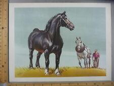 Rare Original VTG Field Horse Equestrian Sam Savitt Color Illustration Art Print