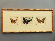 19th Century Chinese Three Watercolour Paintings on Pith Butterflies