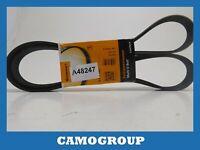 Belt Service V-Ribbed Belt Continental AUDI A4 A5 A6 Q5 Fiat Ulysse 6PK1590