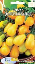 graines de tomates « Goutte  de l'or » - Potager Légumes Plantes - 50 graines