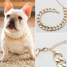 Dog Collar Necklace  Chain Golden  Teddy Pitbull Bulldog