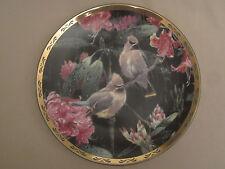 CEDAR WAXWING collector plate SPRING RAIN Alan Sakhavarz BIRD Songbird