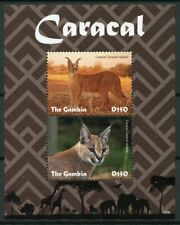 Gambia 2019 MNH Caracal 2v S/S Mammals Big Cats Wild Animals Stamps