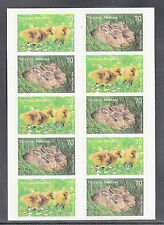 A 31 ) Germany 2016 Chicks and Bunnies Series Animal Kids  10 MNH Stamps skl