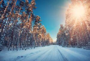 5x3ft Vinyl Photo Backdrops Forest Snow Sunshine Photography Background
