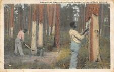 DIPPING & SCRAPING TURPENTINE INDUSTRY IN FLORIDA BLACK AMERICANA POSTCARD 1919