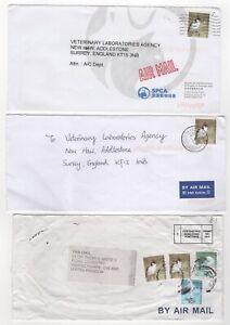 2007 HONG KONG - 3 x Air Mail Covers BIRD ISSUES Job Lot