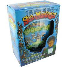 Live SEA MONKEYS Magiquarium Eggs/Food kit Magic aquarium Glow in the Dark Tank
