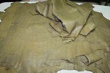 Lambskin leather skin hide KHAKI GREEN DISTRESSED & CROCODILE EMBOSSED 6sqf