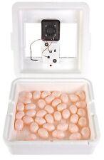LITTLE GIANT CIRCULATED AIR INCUBATOR w/DIGITAL DISPLAY Self Regulating 41 Eggs