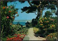 AD3985 France - La Cote d'Azur - Jardin fleuri
