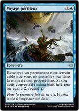 Journey to Eternity//Voyage vers l/'Éternité MTG Magic RIX French//VF