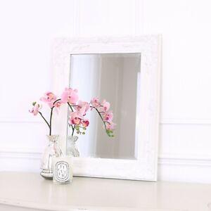Rhone Wall Mirror - French Baroque Rococo Vintage Chic- 42x53cm - White