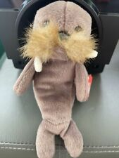 ty beanie babies rare Jolly the walrus mint condition