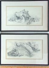 JERRY QUIER 1909-1997 PAFA PENNSYLVANIA 2 GRAPHITE SEASHELL STILL LIFE DRAWINGS