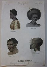 1845 CARATTERI FISIONOMICI LUZON NEW GUINEA ANGOLA ENNAREA acquaforte Marmocchi