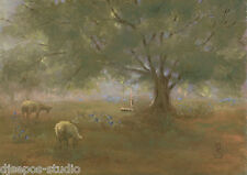 """Evening Light, Sheep"" Debra Sepos original oil 5"" x 7"" farm pasture landscape"