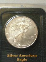 Littleton toned 2000 1oz Silver American Silver Eagle One Dollar Coin Millennium