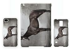 Kauto Star horse racing legend phone cover / tablet cover