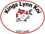 Kings Lynn koi