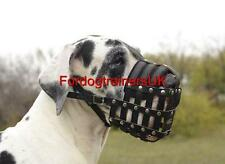 Great Dane Muzzle Leather Royal | New  Light weight dog muzzle for Everyday Use